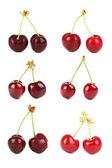 Dvojice Sweet cherry