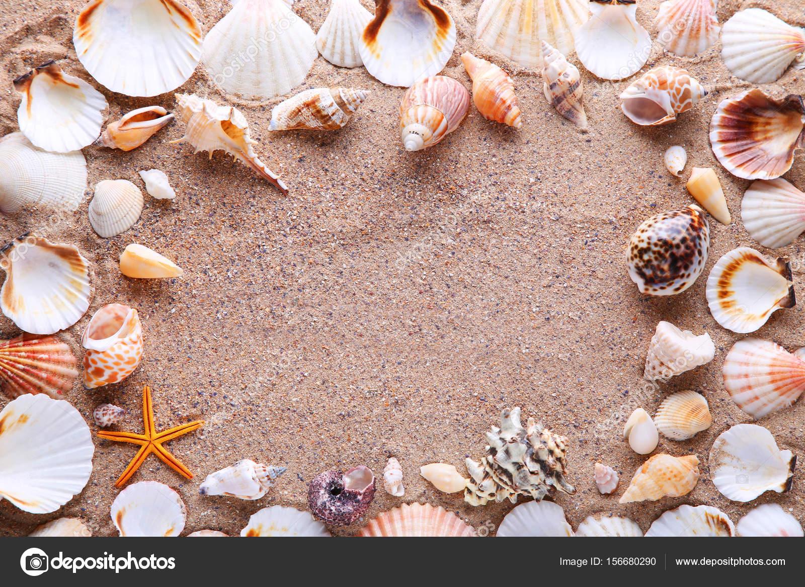 Marco de caracoles en la arena — Fotos de Stock © 5seconds #156680290