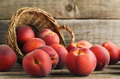 Fotografie Süße Nektarinen Obst