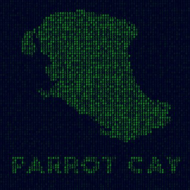 Digital Parrot Cay logo Island symbol in hacker style Binary code map of Parrot Cay with island