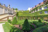 vrtba zahrada v Praze