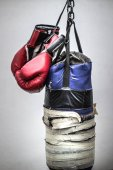 Photo Punching bag and boxing gloves photograph