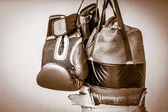 Punching bag and boxing gloves photograph