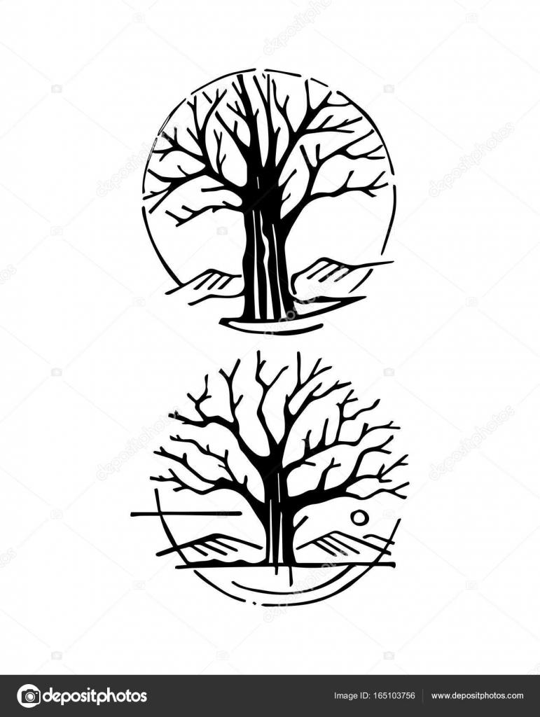 Par De árboles Secos Archivo Imágenes Vectoriales Bernardojbp