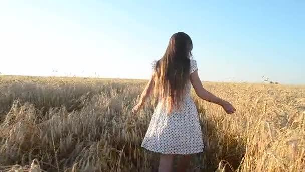 junges Mädchen führt ein Weizenfeld, Berührungen von gelbem reifem Weizen