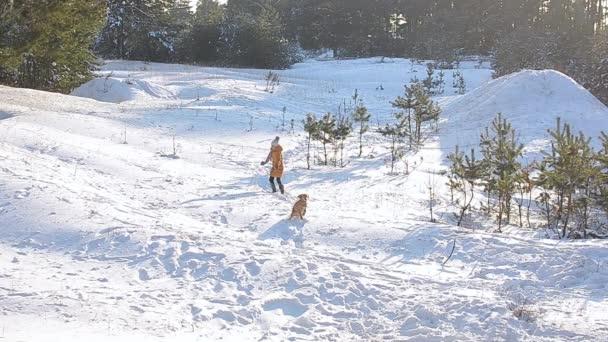 Dívka procházky se psem v zasněžené zimní park na pozadí zasněžených stromů, slunečný mrazivý den