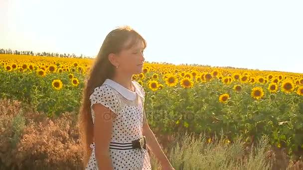 dívka procházky v oblasti žluté slunečnice zlatý květ slunečnice Swaye větru procházku v letních prázdninách