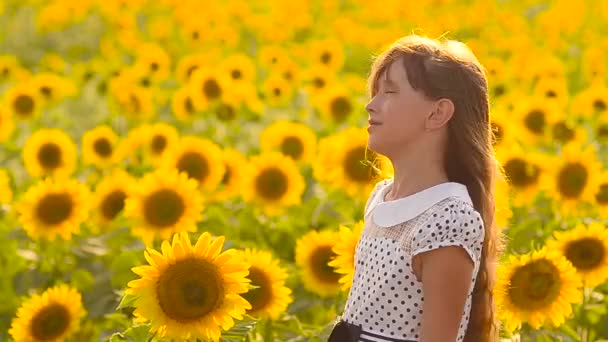 Krásné dospívající dívka s vlasy ve větru procházky v oblasti krásné zlaté květy, žluté slunečnice pole letní slunečný den.