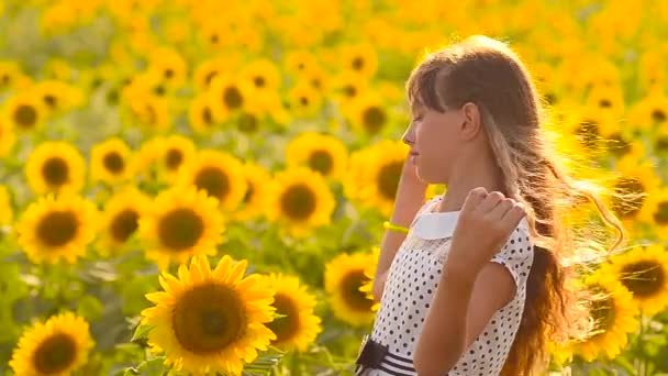 girl with hair flying in wind a field of yellow sunflowers, summer sunny day,