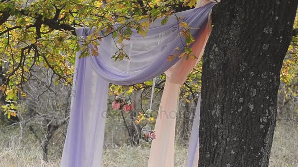 Wedding set up in garden, park. Wedding ceremony in park. Beautifully decorated tree in the park for the wedding