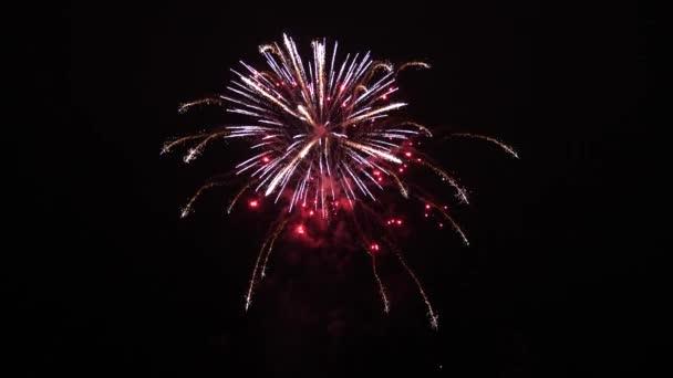 krásný pestrobarevný ohňostroj na noční obloze. Novoroční oslava ohňostroje. zářící ohňostroj s bokeh světly na noční obloze. zářící ohňostroj. barevné noční exploze na černé obloze