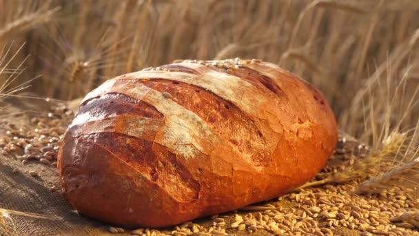 Ízletes kenyér fekszik egy mezőn egy zsák kukoricával és búzával. Kenyeret sütök. Búzamező. Vezetői üzleti koncepció. Finom fehér kenyér készült a pékségben..
