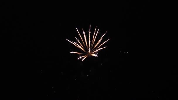 schönes mehrfarbiges Feuerwerk am Nachthimmel. Zeitlupe. Glühendes Feuerwerk. Farbige nächtliche Explosionen am schwarzen Himmel. Silvesterfeuerwerk. Leuchtendes Feuerwerk mit Bokeh.