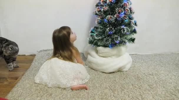 Malá holčička a kočka si hrají v pokoji u vánočního stromečku. Šťastné dětství. dětský a vánoční stromek s krásnými girlandami. vánoční prázdniny koncept
