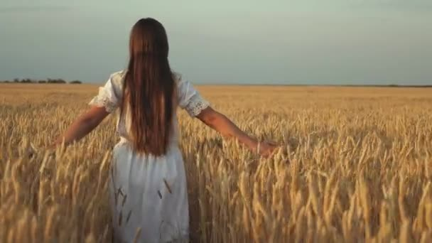 happy young girl runs in slow motion across field, touching ears of wheat with her hand. Beautiful free woman enjoying nature in warm sunshine in a wheat field on a sunset background. girl travels.