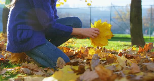 Lány az őszi parkban