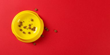 Yellow bowl with cat food on a red background. The concept of healthy eating for pet. Copy space.
