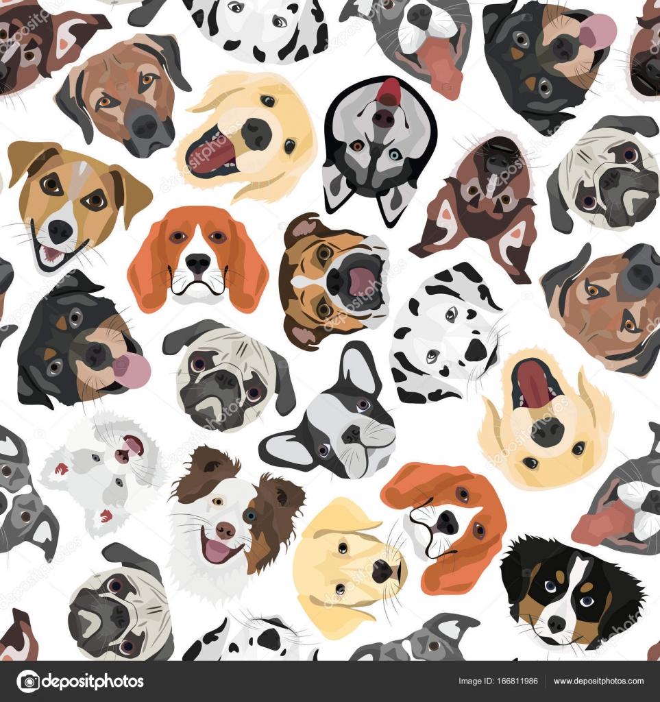 Ilustración transparente patrón perros — Archivo Imágenes ...