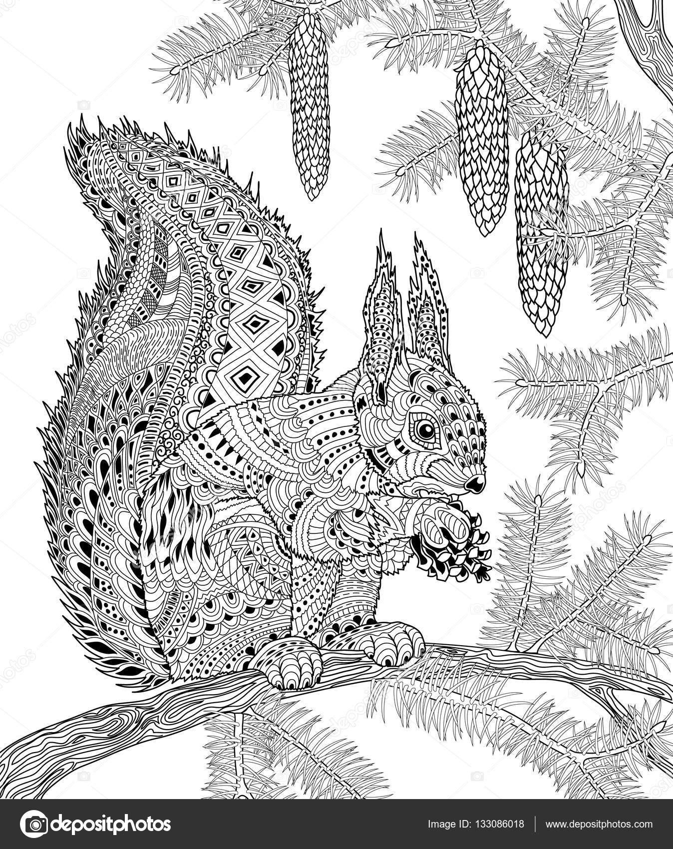 L écureuil pour adulte anti stress Coloring Page — Image vectorielle