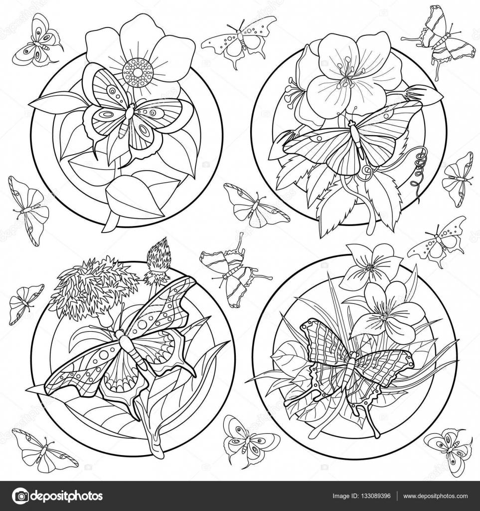 Genoeg Kleurplaat voor volwassenen met vlinders en bloemen — Stockvector  WG48