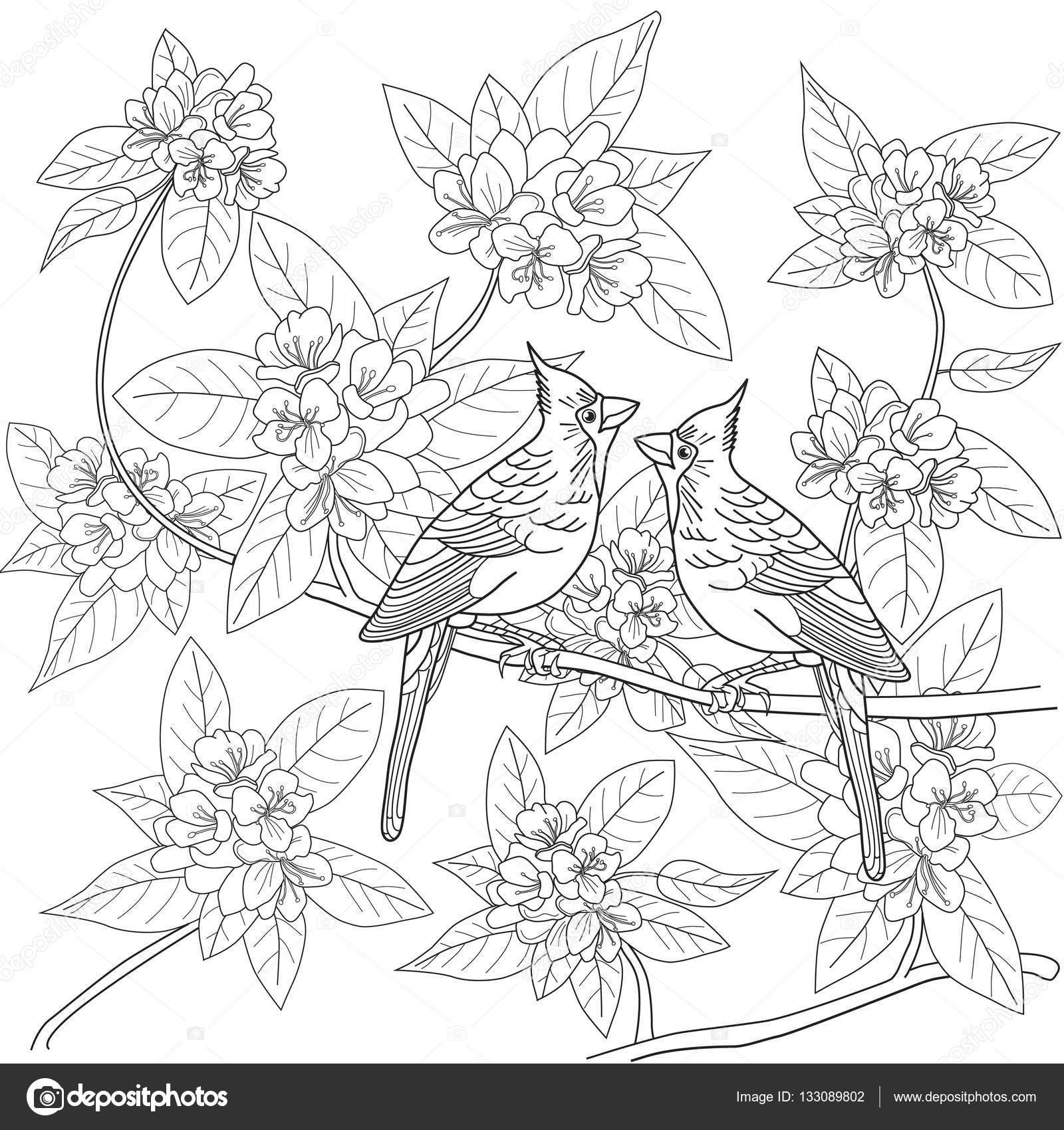 Kleurplaten Voor Volwassenen Met Bloemen.Kleurplaat Voor Volwassenen Met Vogels En Bloemen Stockvector