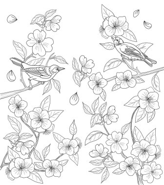 Coloring page for adults with birds and flowers