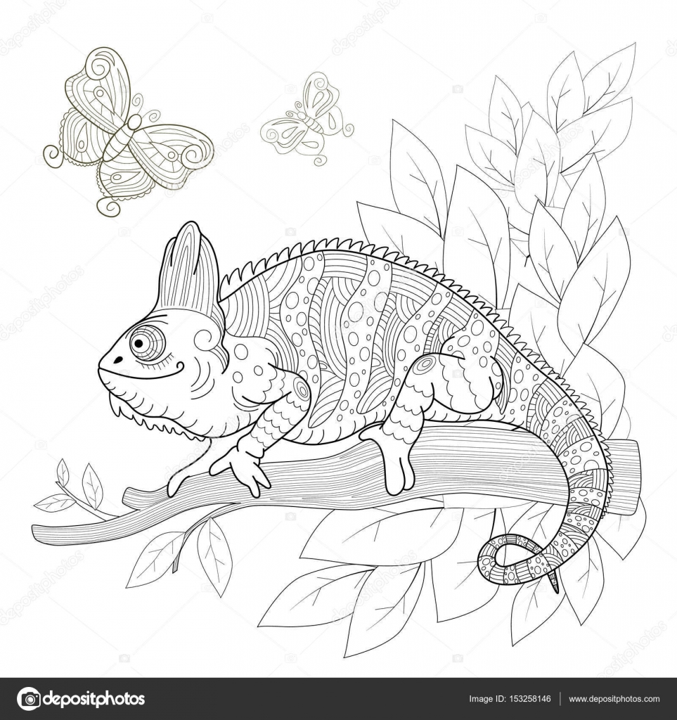 Hand Drawn Decorative Chameleon Is Sitting On A Tree Branch Near The Butterflies Fly Antistress Coloring Page With High Details Isolated Pattern