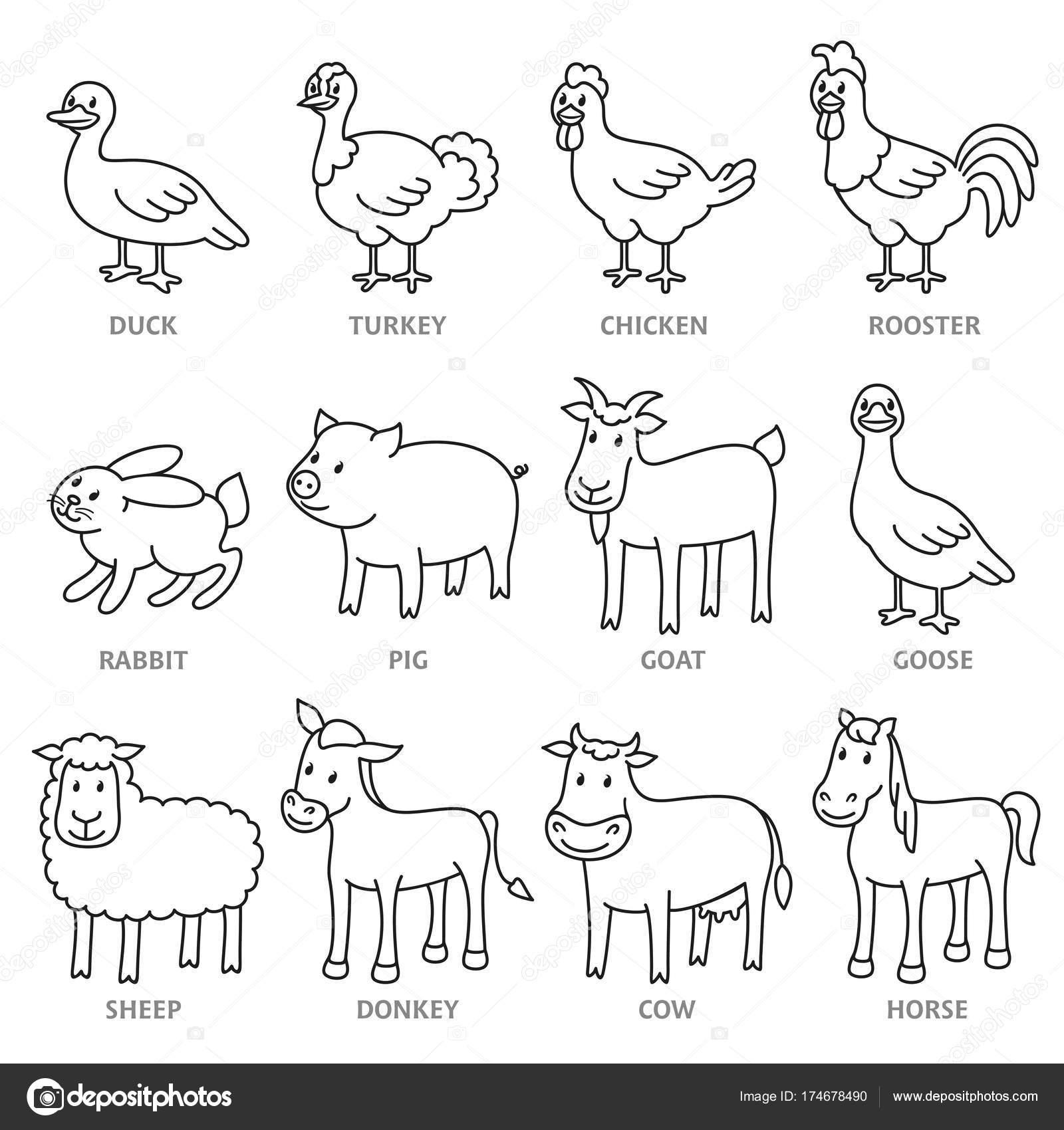 Set di animali da fattoria isolata catalano in stile linea for Animali da colorare e stampare