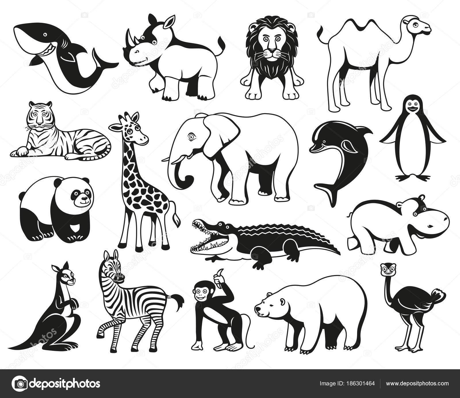 Silhouette Graphique Noir Et Blanc Des Animaux Sauvages