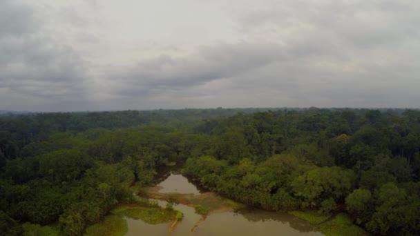 Amazon Rainforest - cloudy sky