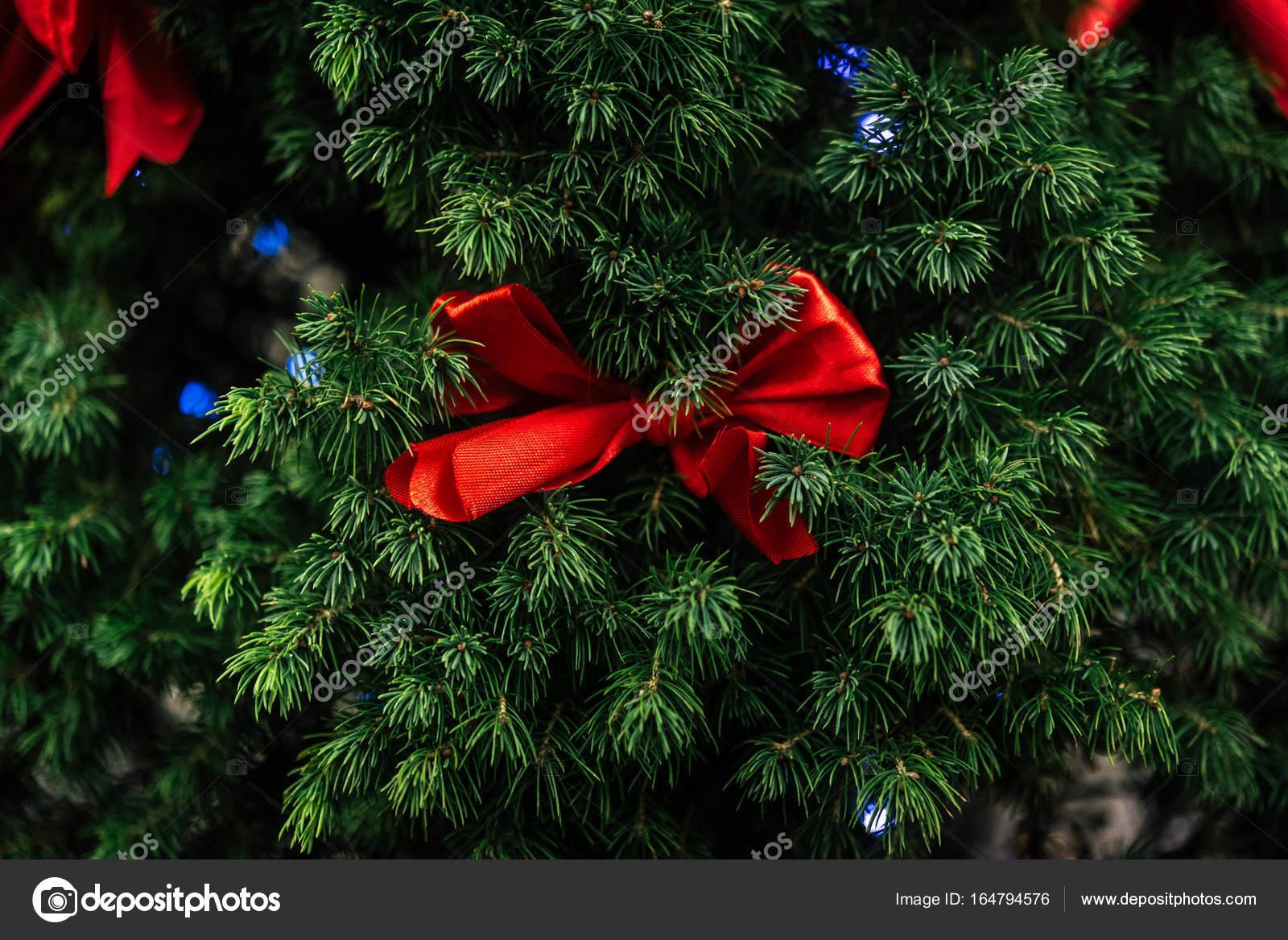 Schleifen Weihnachtsbaum.Rote Schleifen Am Weihnachtsbaum Stockfoto Sonyachny 164794576
