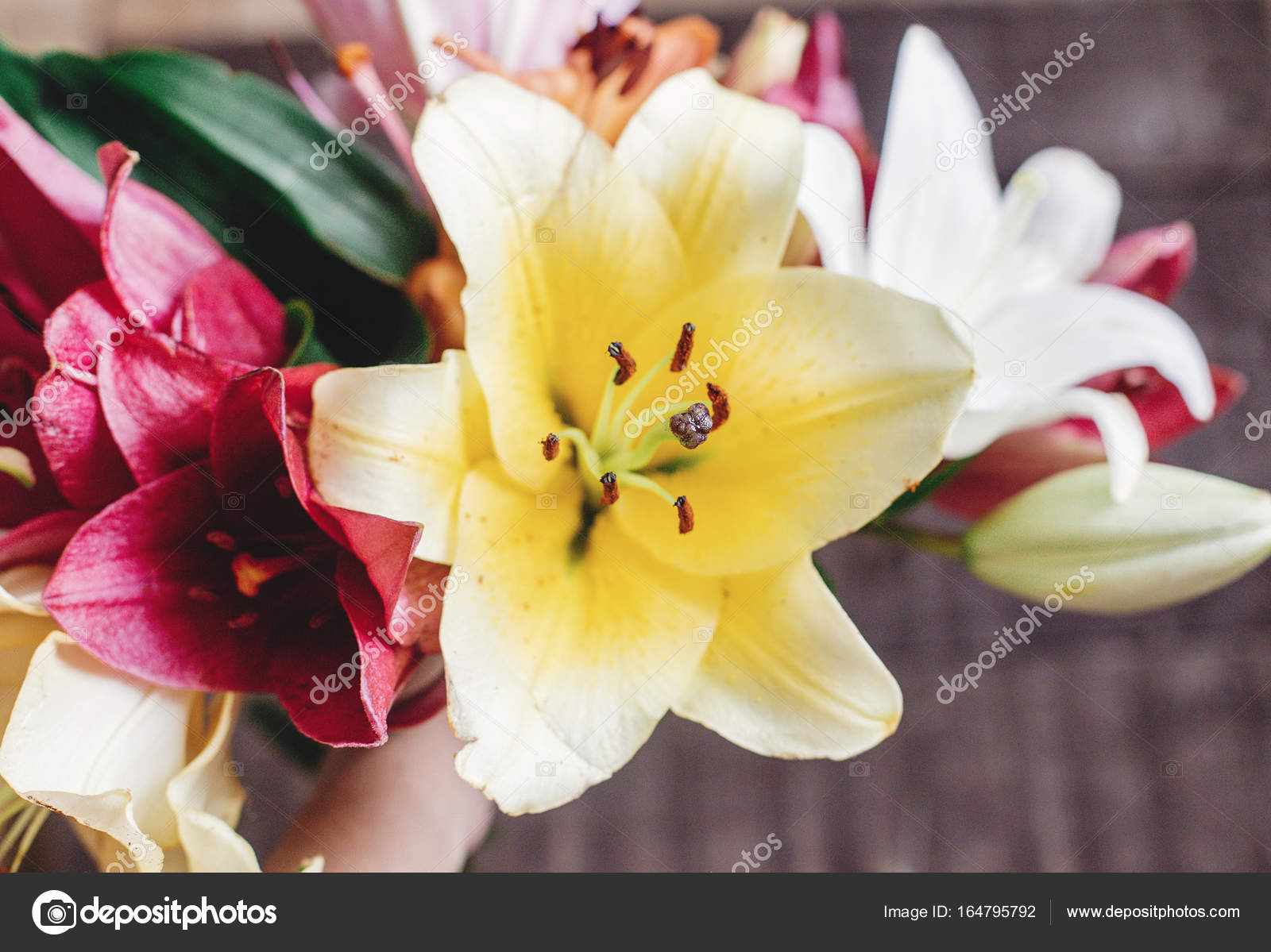 Hand holding lily flowers stock photo sonyachny 164795792 hand holding lily flowers stock photo izmirmasajfo