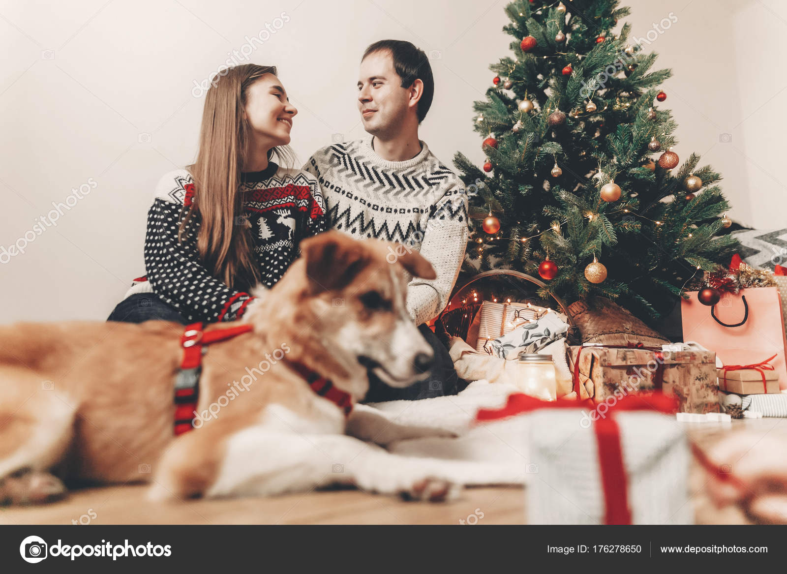 Happy Couple Hugging Christmas Tree Lights Cute Dog Looking Gifts