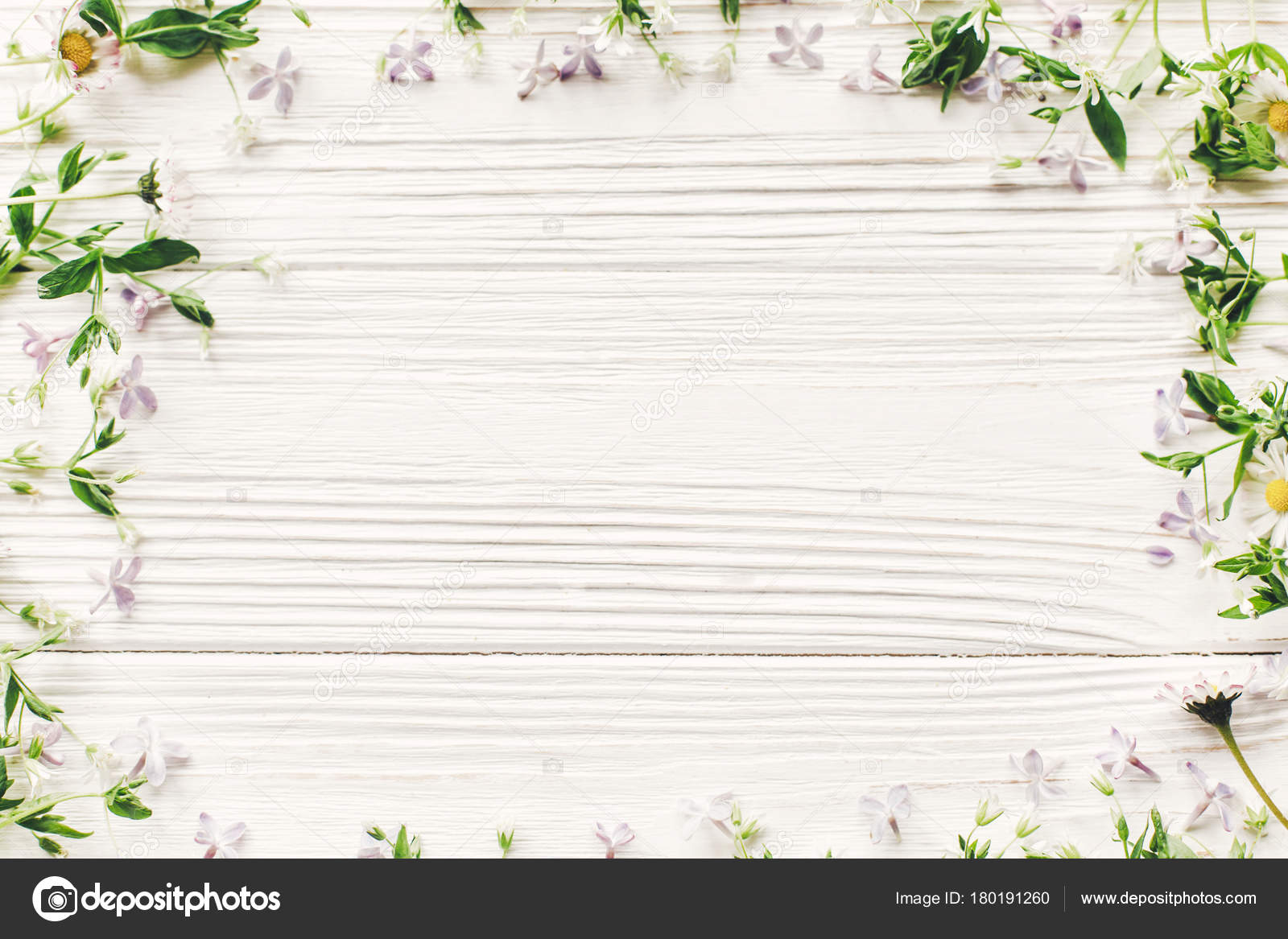 Fresh Daisy Lilac Flowers Green Herbs Frame White Wooden Rustic