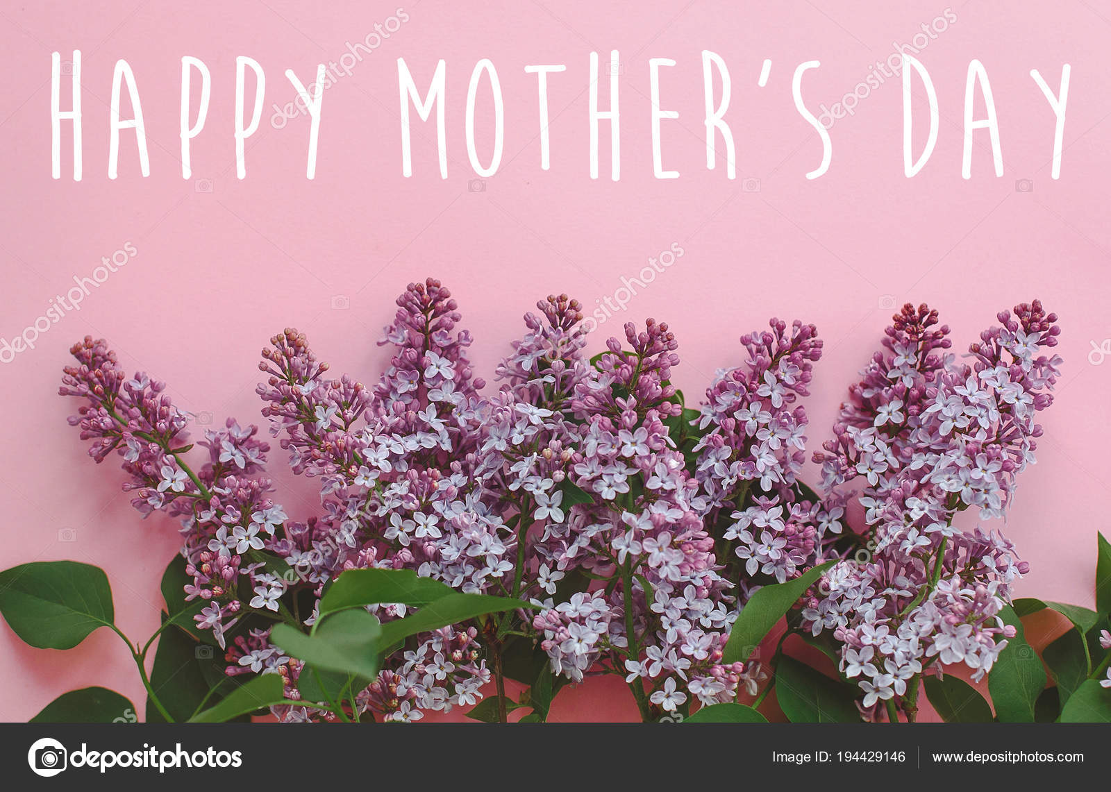 Happy Mother Day Text Greeting Card Beautiful Lilac Purple Flowers