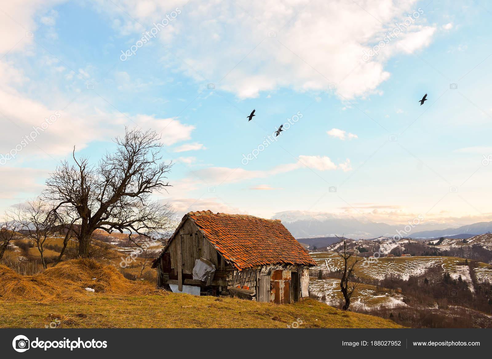 Misty Hill Farm Impresionante Naturaleza Con Paisaje Brumoso