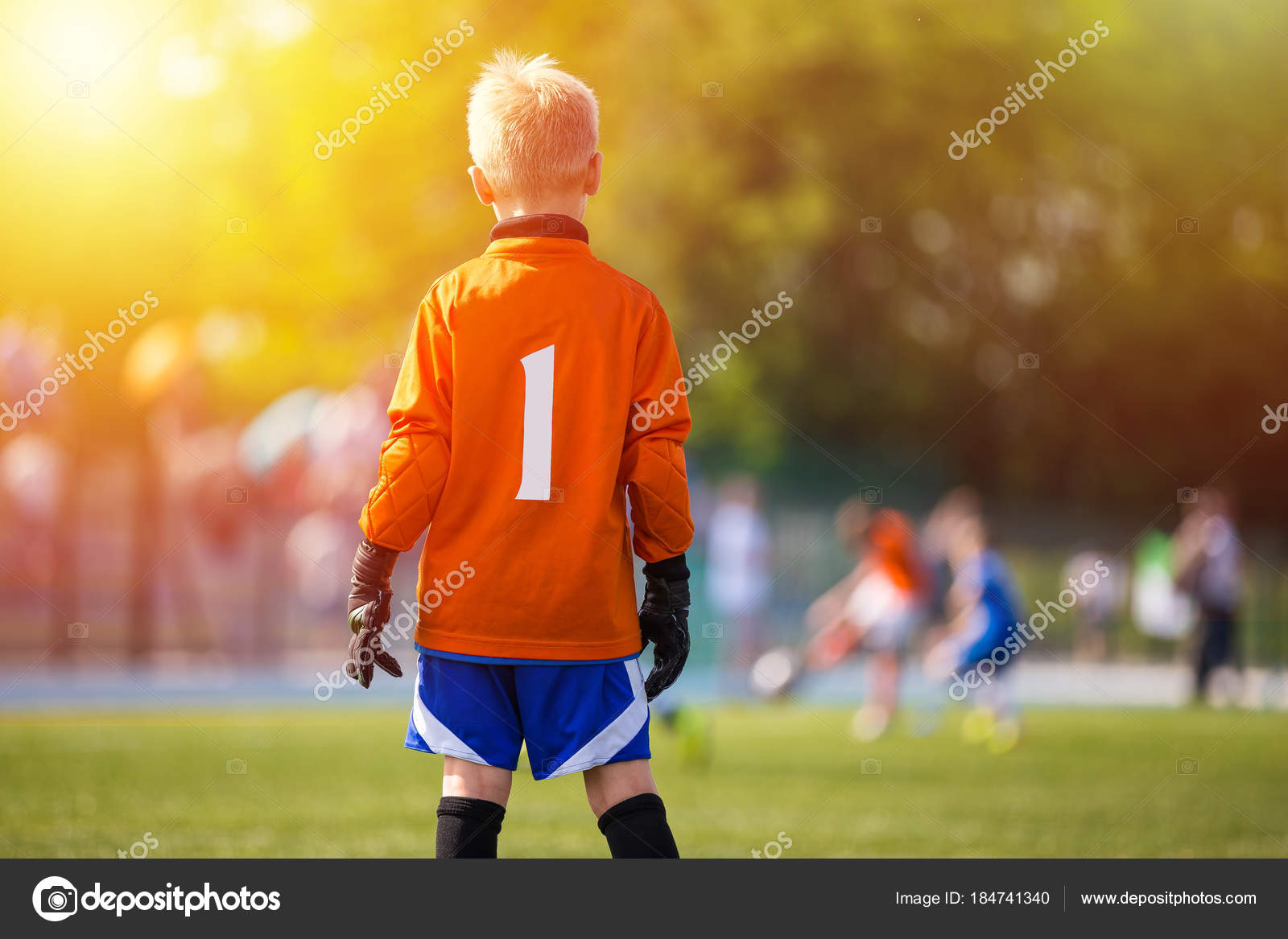 Young Soccer Goalie Goalkeeper Young Boy Soccer Goalie Soccer Stock Photo C Matimix 184741340