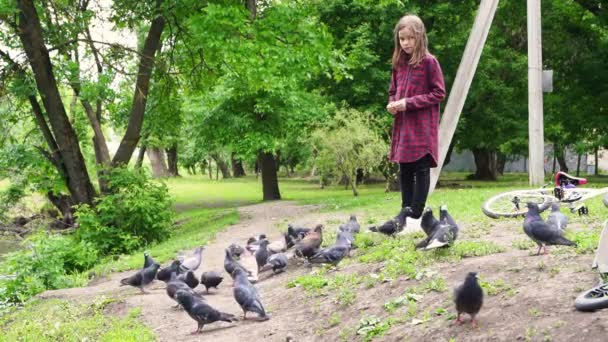 girl feeding pigeons in the Park. nature walk and care for the animals and birds