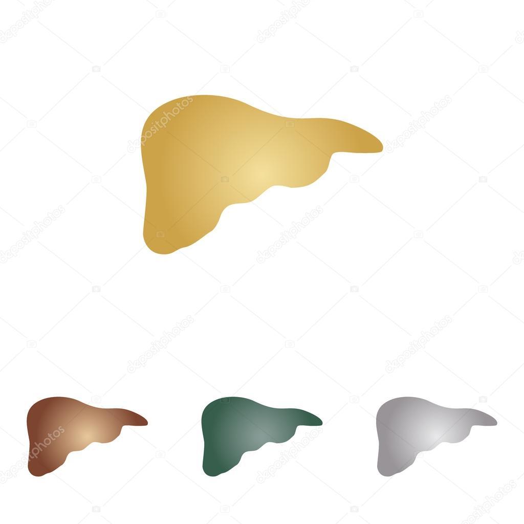 Menschliche Anatomie Abbildung. Leber Zeichen. Metall-Icons auf ...