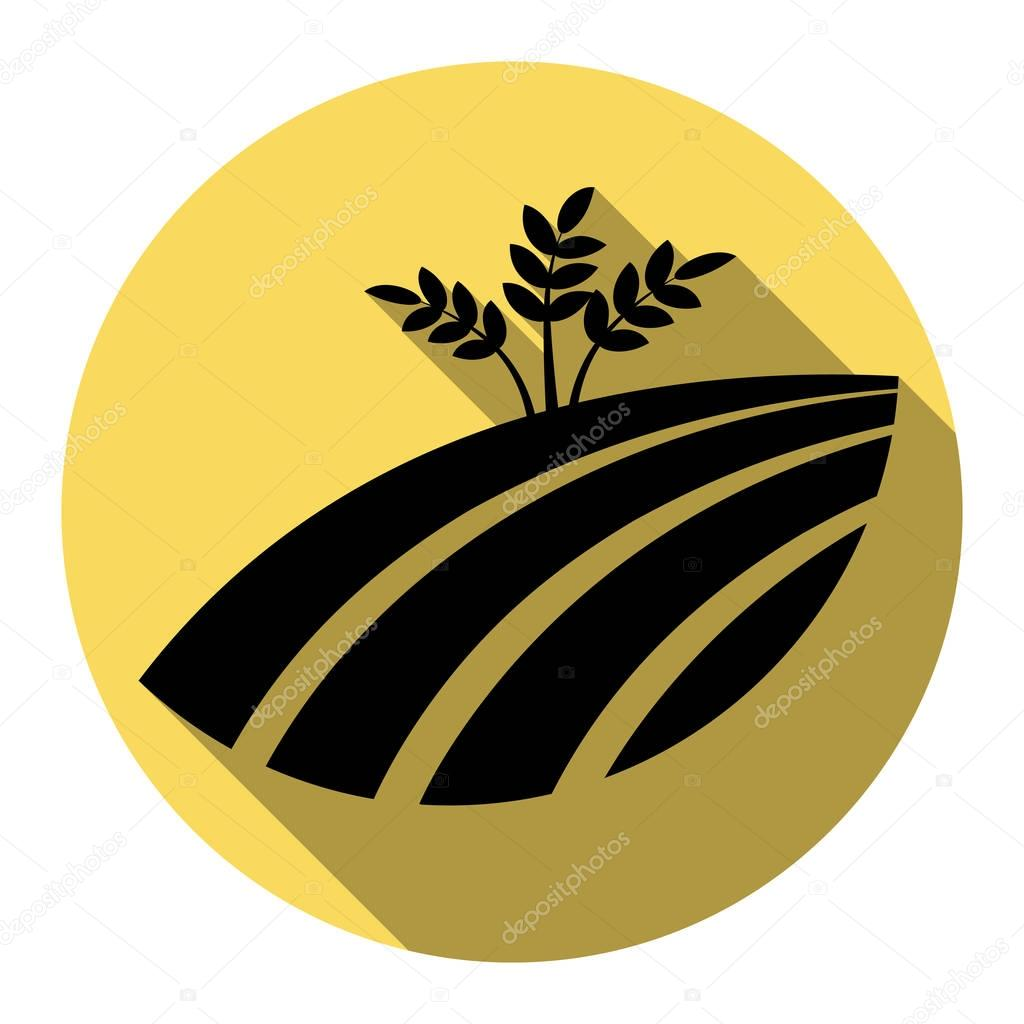 Wheat field sign. Vector. Flat black icon with flat shadow on royal yellow circle with white background. Isolated.