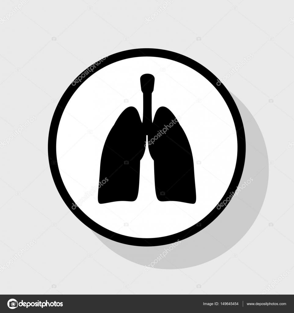Anatomía humana. Signo de los pulmones. Vector. Icono negro plano en ...