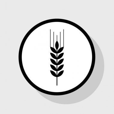 Wheat sign illustration. Spike. Spica. Vector. Flat black icon in white circle with shadow at gray background.