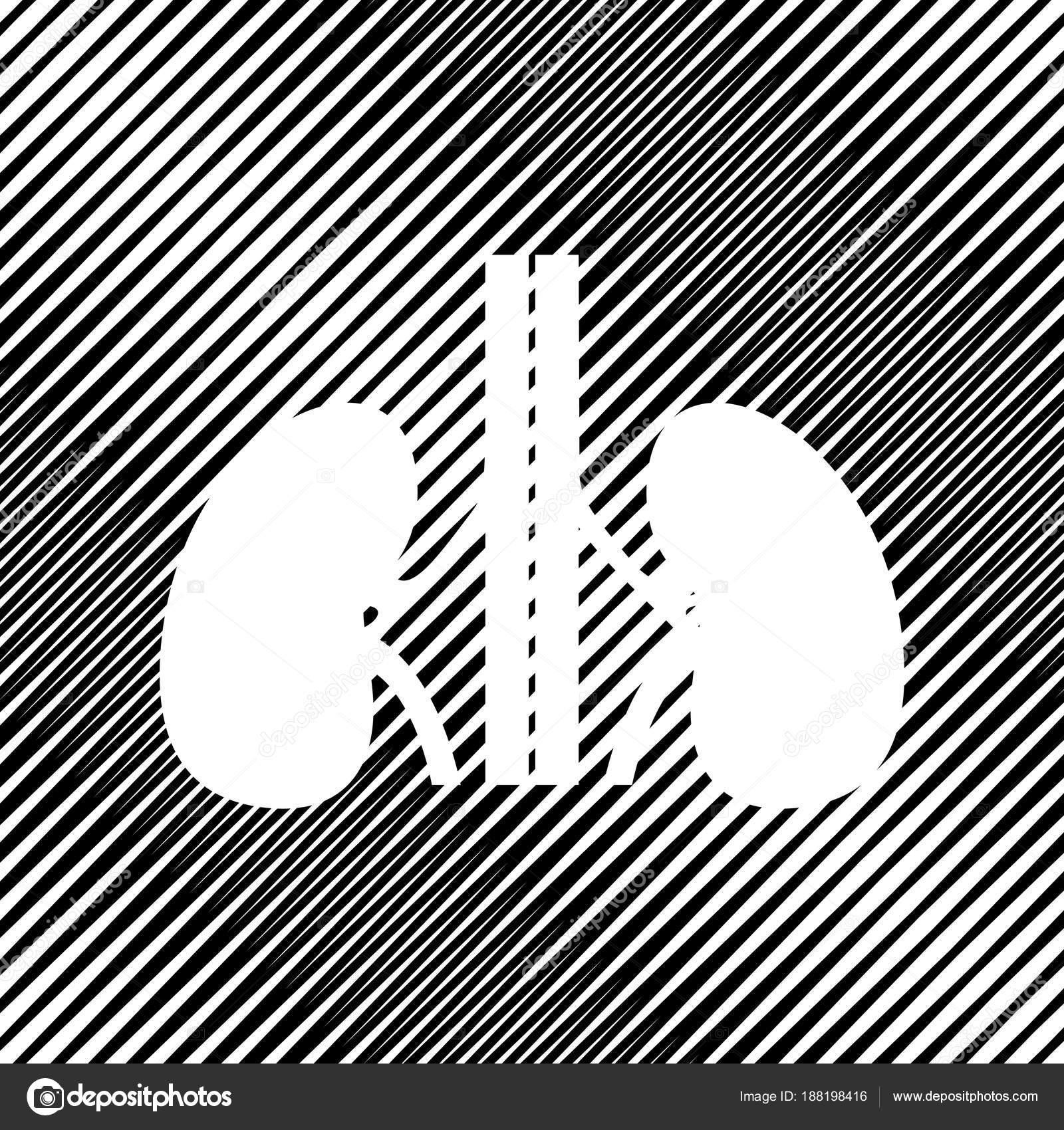 Anatomía humana. Signo de los riñones. Vector. Icono. Agujero en ...