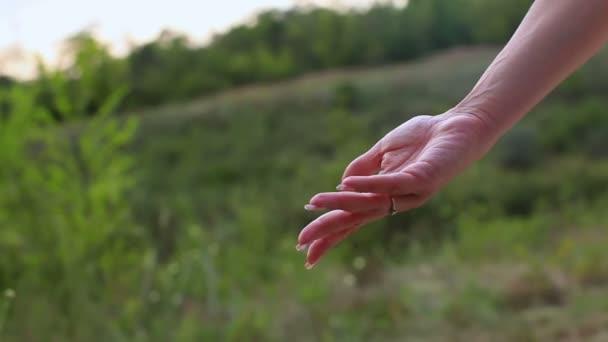 Mutter und Tochter Hände auf grünem Hintergrund. Hand in Hand. Sorge um Kinder