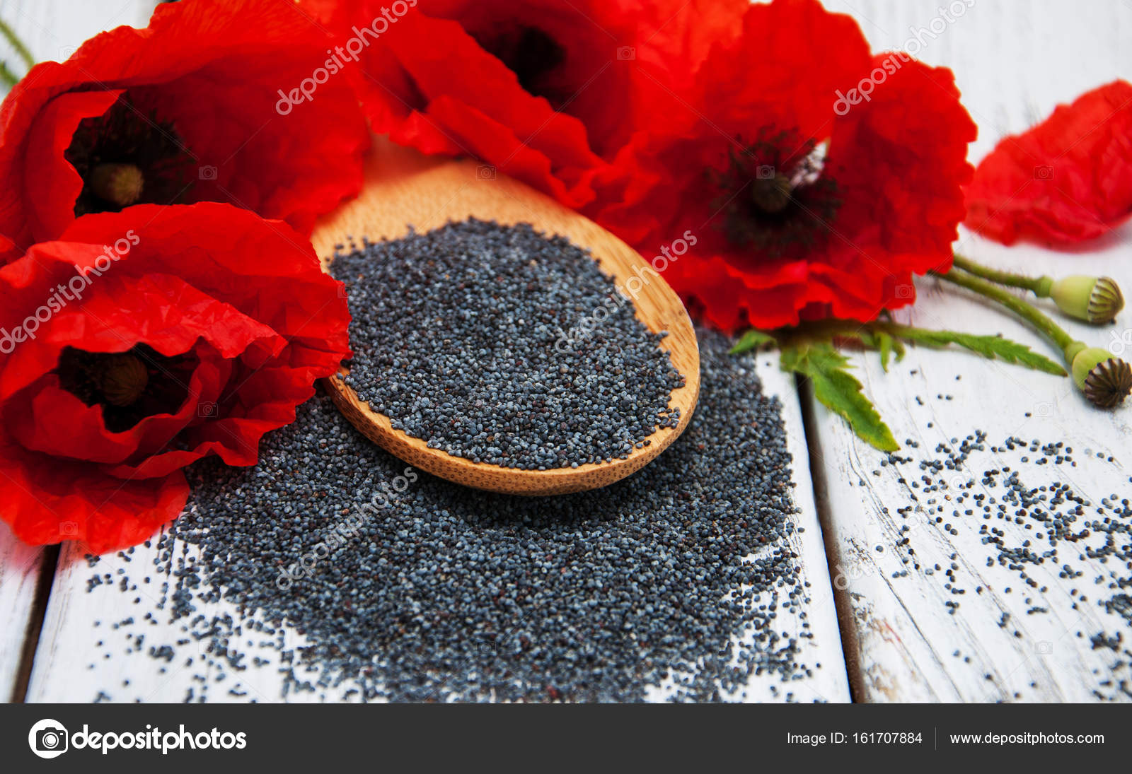 Poppy seeds and flowers stock photo almaje 161707884 poppy seeds and flowers stock photo mightylinksfo