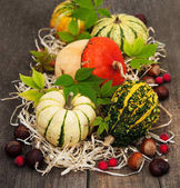 Pumpkins with autumn leaves