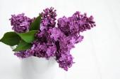 bouquet di fiori di lillà