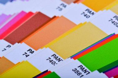 Color Palette Pantone Guide Close Up. Colorful Swatch Catalog.