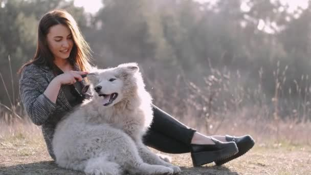 Pretty girl is walking with a cute fluffy dog in the field