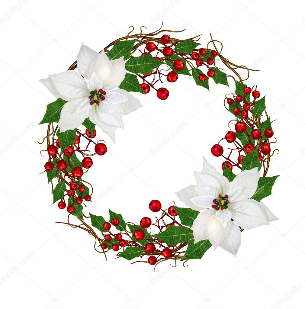 Christmas wreath, flower garland. White poinsettia, red berries ...